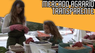 Photo of [VIDEO] I Mercado Agrario Transparente del Valle de Aranguren